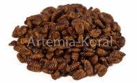 Silkworm PREMIUM